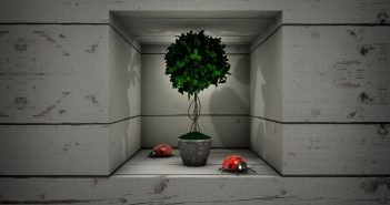 La niche murale : emplacement et mise en valeur
